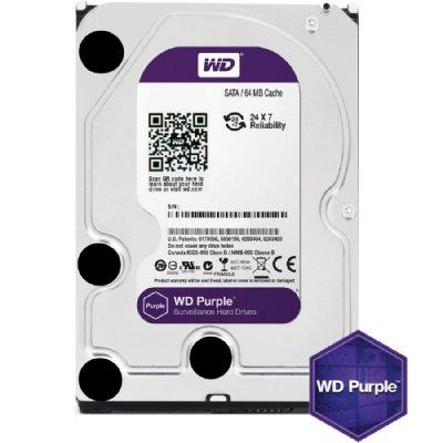 HDD WD Purple 1TB